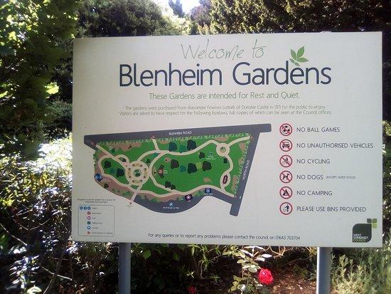 blenheim gardens minehead